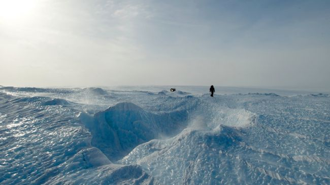 Sastrugis in blue ice field - © International Polar Foundation